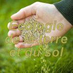 ecologie-du-sol