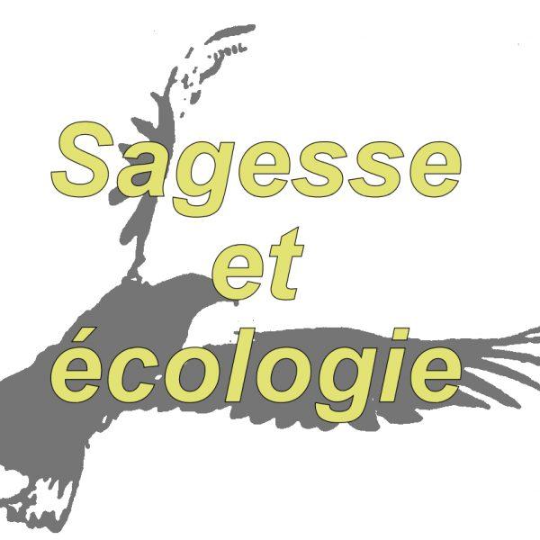 Sagesse et écologie