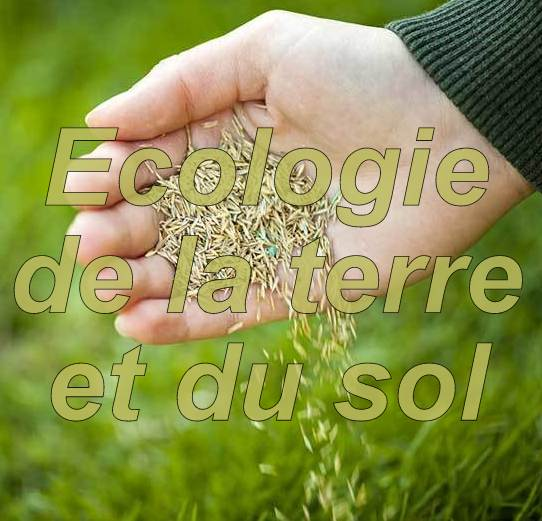 Ecologie de la terre et du sol